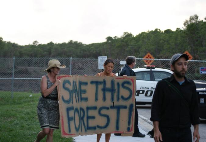 Protesters are told they cannot protest on the public roads in front of a recently-cleared section of the Briger. Only days ago, the area directly behind this fence was dense with trees, shrubs, and animal life.