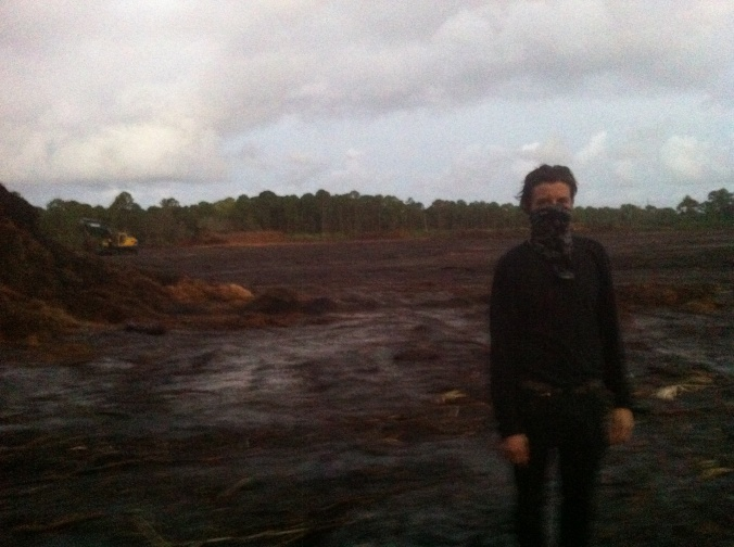 An activist stands in a cleared section of the Briger Forest, December 4, 2014