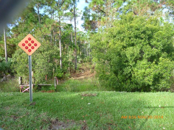 South Florida Water Management District's photo of the perimeter of the Briger from Grandiflora Ave, November 20, 2014. This photo shows a section of the Briger approximately 300 feet from the beginning of the clearing.